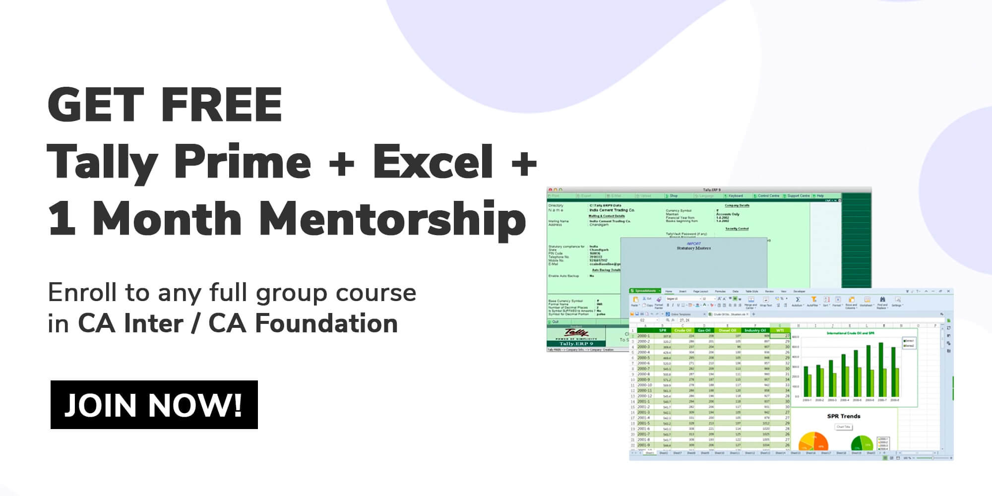 Tally + Excel Free
